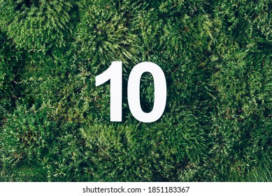 Green grass, digit ten. Birthday greeting card with inscription 10. Anniversary concept. Top view. White numeral on eco moss background. Numerical digit, Celebration event, template, flyer.