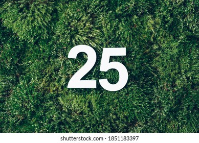 Green grass, digit twenty-five. Birthday greeting card with inscription 25. Anniversary concept. Top view. White numeral on eco moss background. Numerical digit, Celebration event, template, flyer.