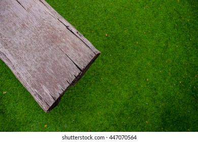 Green Grass Field Background with Foliage and Wood Bench