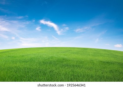 green grass field with blue sky ad white cloud. nature landscape background - Shutterstock ID 1925646341