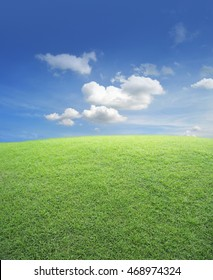 Green grass field with blue sky, nature background