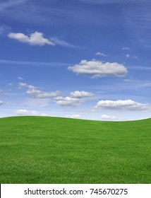 Green grass field and blue sky in summer.