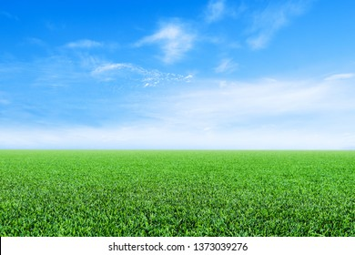 green grass field and bright blue sky .