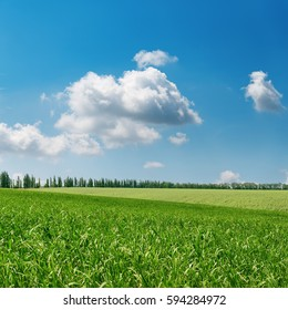 green grass field and clouds in blue sky