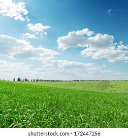 green grass field and clouds over it