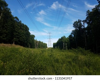 green grass field and electrical tower and lines