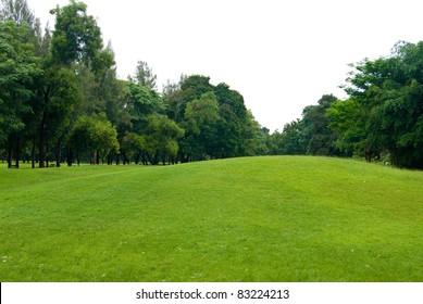 Green grass field , Golf course concept
