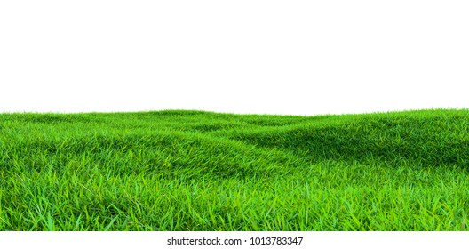 Green grass field isolated on white background. 3d illustration