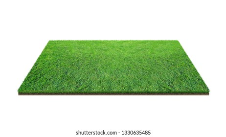Green grass field isolated on white with clipping path. Artificial lawn grass carpet for sport background. Background for landscape, park and outdoor.