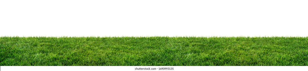 green grass field isolated on white background - Shutterstock ID 1690993135