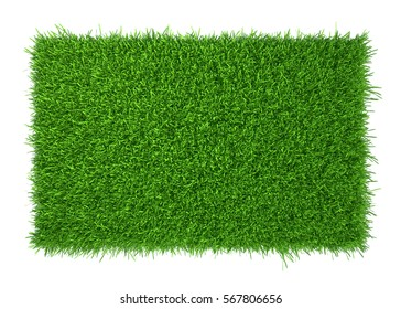 green grass field isolated on white background. 3d rendering