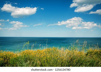 Green Grass Field Near Sea, Blue Sky, White Cluds