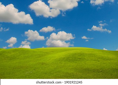 Green grass field on blue sky with cloud background. Green meadow under blue sky with clouds.