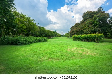 Green grass field in park at city center with business buildings in Bangkok, Thailand