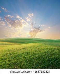 Green grass field in summer sunset sky over hills.