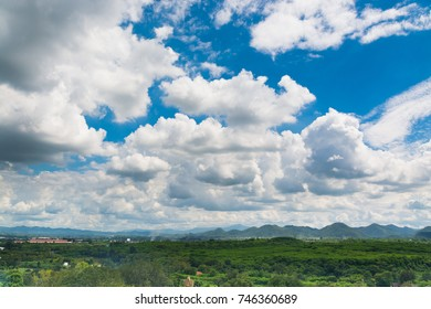 Green Grass Field with Wood and Mountain under Blue sky White Cloud Sunny Daytime as Nature Landscape Concept for use as Background.