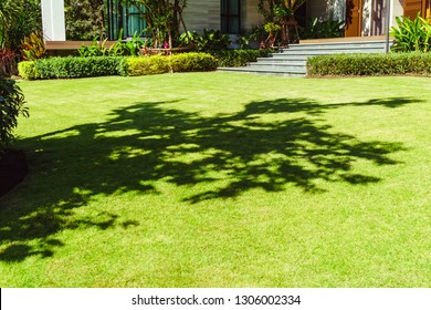 Green grass in the front yard, Modern house with beautiful landscaped front yard, Lawn and garden blur background, The design concept for background, House in the garden.