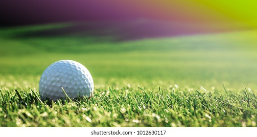 Green grass with golf ball close-up in soft focus at sunlight. Sport playground for golf club concept - wide landscape as background for your lettering about golf playing.
