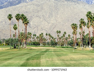 Green grass of golf course and palm trees with blue skies with mountain background