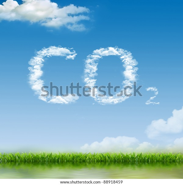 Green grass growing under clear blue sky background