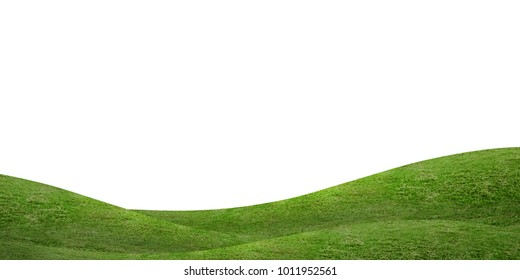 Green grass hill background isolated on white. Natural outdoor of green meadow for  background.