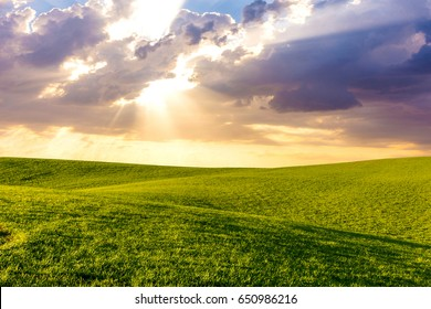 Green grass hills meadows landscape with cloudy sky and sun rays at sunset. Outdoor nature background.