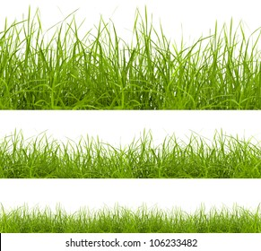 green grass isolated on white background