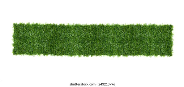 The green grass isolated on white. Top view.
