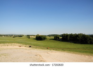 green grass land and blue sky