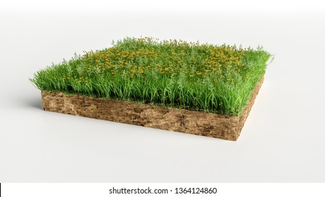 Green Grass Land Piece with flowers Isolated on White Background. 3D Illustration