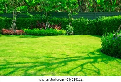 Green grass, Landscape formal, Front yard is beautifully designed garden.