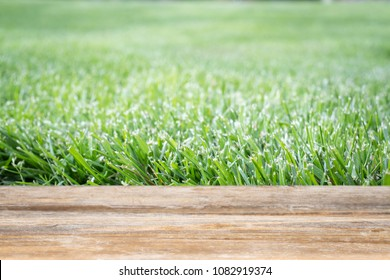 Green grass lawn with old wooden deck for add text, message, or merchandises.
