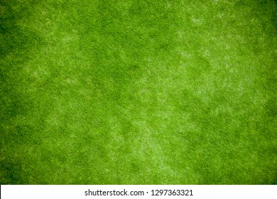 Green grass, lawn top view