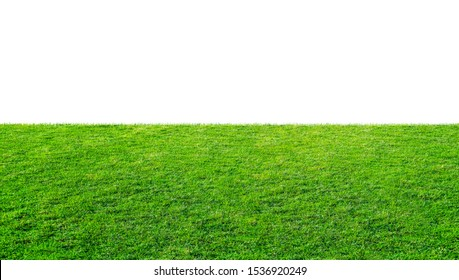 Green grass meadow field from outdoor park isolated in white background with clipping path. Outdoor countryside meadow nature. Landscape of grass field in public park use as natural background.