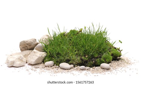 Green grass and moss with sand and decorative stone, rock isolated on white background