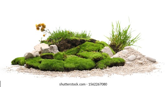 Green grass and moss with yellow flowers, sand and decorative stone, rock isolated on white background