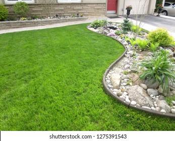 Green grass next to garden in front yard