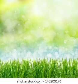 Green grass on abstract background, space