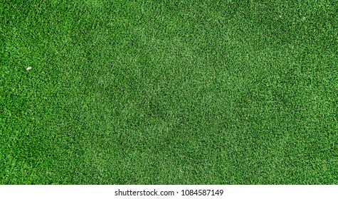 green grass on background