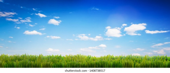 Green grass on blue sky panorama. Spring summer background