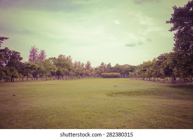 Green grass on a golf field -Vintage retro picture style