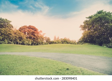 Green grass on a golf field - Vintage retro picture style