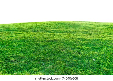 Green grass on a mound. It is isolated on white background.