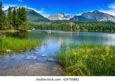 Green grass on the shore of beautiful clear lake under mountains - strbske pleso, High Tatras, Slovakia