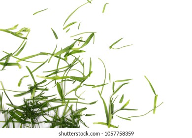 Green grass, organic plant texture isolated on white background, top view