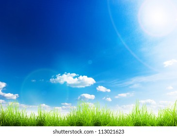 Green grass over a blue sky. Beauty natural background