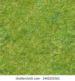 green grass seamless square pattern background top down view of lawn meadow texture for design natural color hi resolution photo for wallpaper design template