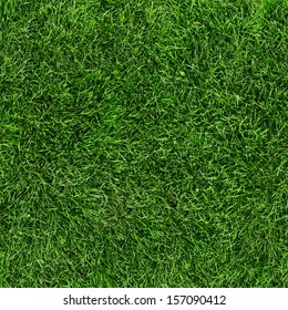 Green grass seamless texture. Seamless in only horizontal dimension. - Shutterstock ID 157090412