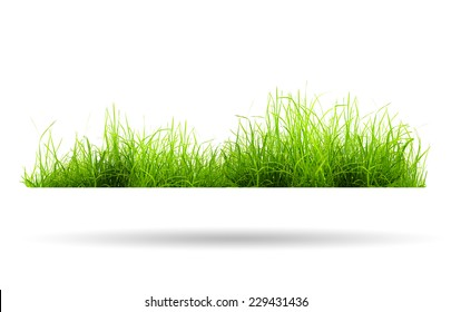 green grass with shadow isolated on white background