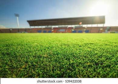 Green grass in soccer stadium